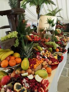 fruit_display04