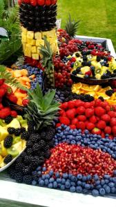 fruit_display08
